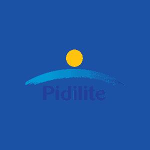 Pidilite Industries Limited